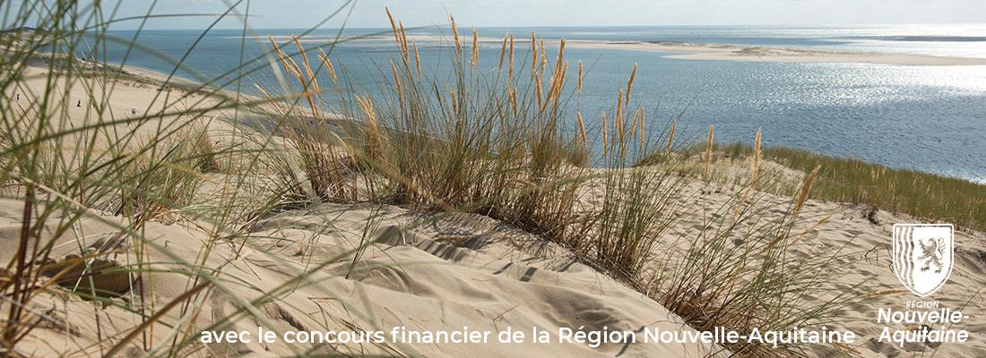 La Nouvelle-Aquitaine soutient la digitalisation du commerce local avec une offre préférentielle